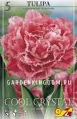 Тюльпан бахромчатый  COOL CRYSTAL, 5 шт