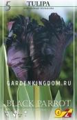 Тюльпан попугайный  BLACK PARROT, 5 шт