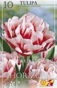 Тюльпан пионовидный  HORIZON, 10 шт