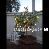 Гирлянда садовых светильников GLOBINI Solar energy, 4,75 м, белый