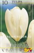 Тюльпан Фостера PURISSIMA, 10 шт