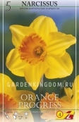 Нарцисс крупнокорончатый ORANGE PROGRESS, 5 шт
