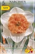 Нарцисс крупнокорончатый  PRECOCIOUS, 5 шт