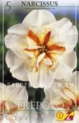 Нарцисс орхидейный  TREPOLO, 5 шт