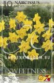 Нарцисс ботанический  SWEETNESS, 10 шт