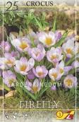 Крокус ботанический  FIREFLY, 25 шт