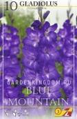 Гладиолус крупноцветковый BLUE MOUNTAIN, 10 шт.