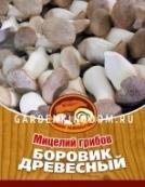 Боровик древесный, мицелий на древесных палочках, 16 шт.