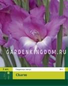 Гладиолус карликовый CHARM, 3 шт.
