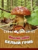 Белый гриб, мицелий на субстрате, 60 мл.