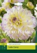 Георгина декоративная  LAKE CAREY, 1 шт.