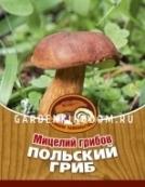 Польский гриб, мицелий на субстрате, 60 мл.