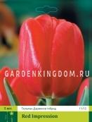 Тюльпан Дарвинов гибрид RED IMPRESSION, 3 шт