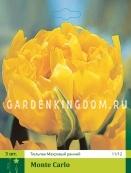 Тюльпан махровый ранний MONTE CARLO, 3 шт