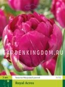Тюльпан махровый ранний ROYAL ACRES, 3 шт